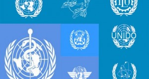 The World Organizations and Protection of Human Rights