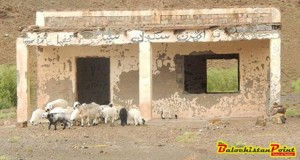 Plight of Education in Balochistan