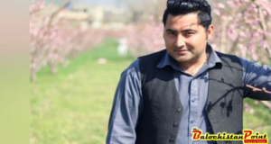 Mashal's lynching; where this society is off to?