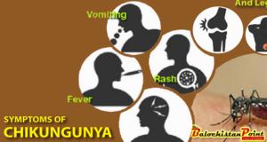 Blog: Chikungunya